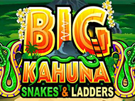автомат Big Kahuna Snakes And Ladders – играйте бесплатно